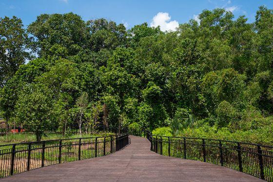 Hampstead Wetlands Park Singapore
