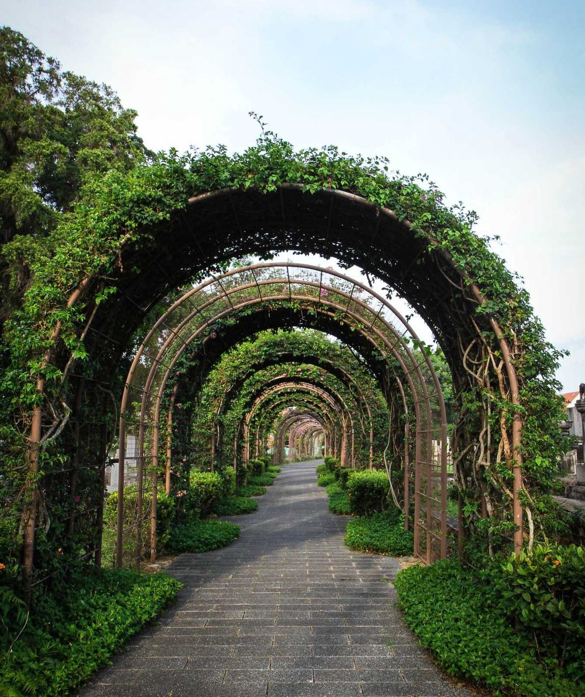 7 Romantic Outdoor Destinations in Singapore to Live Out Your Cottagecore Dreams